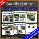 Groundhog Day Emergent Reader and Non Fiction Unit Kindergarten First Grade