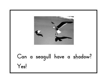 "Groundhog Day-Emergent Reader-  ""Can A Groundhog Have A Shadow?"" 8 pages"