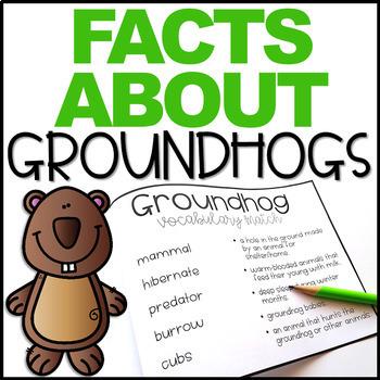 Groundhog Day Fact Book Freebie