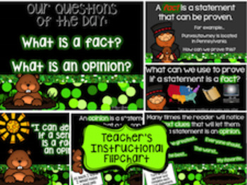 Groundhog Day Fact and Opinion Activities