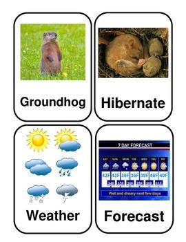 Groundhog Day Flashcards *Real Photos!