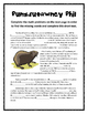 Groundhog Day Math Mystery Stories (Common Core Aligned!)