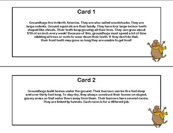 Groundhog Day-Reading Comprehension- Read The Room-Grades 5-8