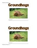 """Groundhog Day Sight Word """"is & and"""" Resource!"""