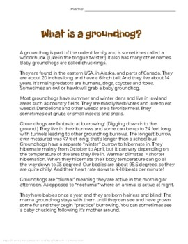 Groundhog Day Study & Activity Pack - FREE!