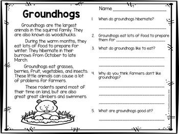Groundhog Day! PLUS Substitute Groundhog book activities!!