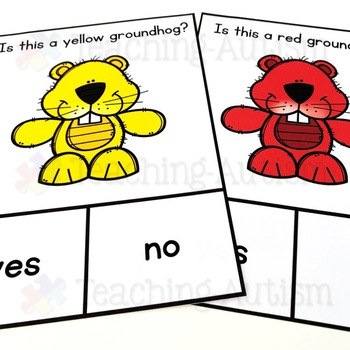 Groundhog Day Yes / No Questions
