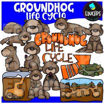 Groundhog Life Cycle Clipart Bundle {Educlips Clipart}