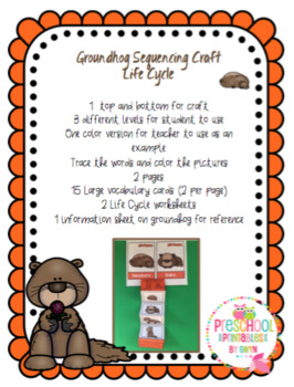 Groundhog Life Cycle Sequencing Craft