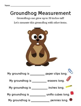 Groundhog Measurement