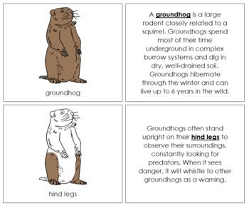 Groundhog Nomenclature Book