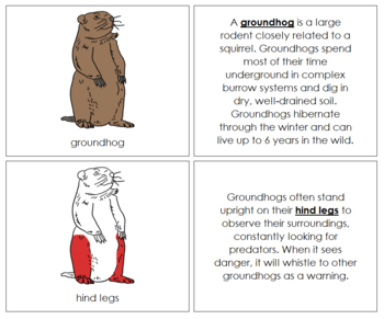 Groundhog Nomenclature Book (Red)