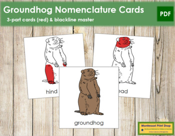 Groundhog Nomenclature Cards - Red
