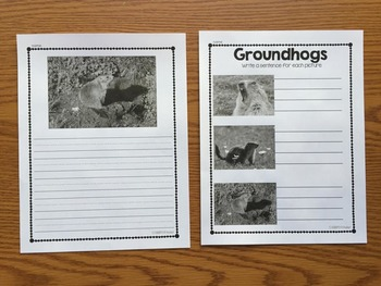 Groundhog Day Activities:  Nonfiction Book with Activities