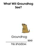 Groundhog Predictions