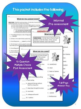 Groundhog Reading Activity Packet