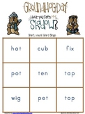 Groundhog Short Vowel CVC word Bingo GAme