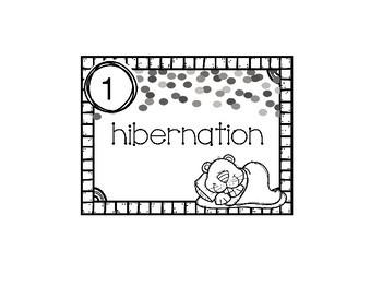 Groundhog Synonyms for Hibernation Station