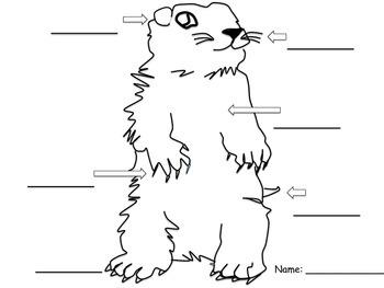 Canadian Groundhog Unit