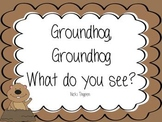 Groundhog--What do you see? Explanation of what happens on February 2nd