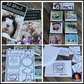 Groundhog's Day Groundhog Facts and Activities K-1