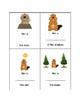 Groundhog's Day Preposition Book