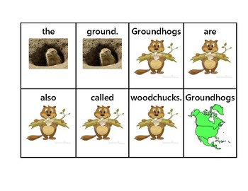 Groundhog's Day Sentence Scramble