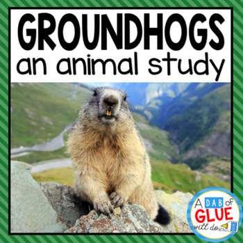 Groundhogs: An Animal Study