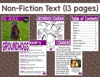 Groundhogs Complete  Reading and Writing Unit {Common Core Aligned}