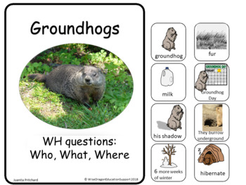 Groundhogs Flip Book - WH questions