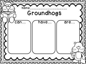 Groundhogs Graphic Organizer
