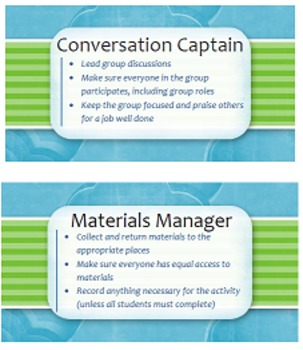 Group Accountability Roles