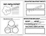 Group Animal Report - Shared Research - Kindergarten, 1st,