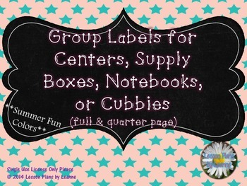 Group Number Signs (summer fun colors)  Back To School