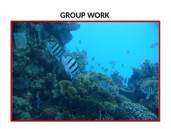 Group Work Flashcards