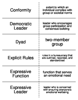 Groups and Organizations Flash Cards for Sociology