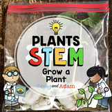 Grow A Plant STEM Activity: From Seed to Plant Observation