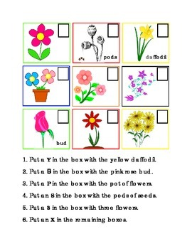 Grow Flowers Spring Following Directions Comprehension Emergent Reader Literacy