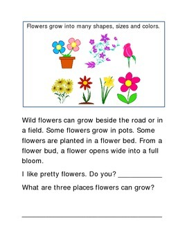 Grow Flowers Spring Following Directions Comprehension Eme