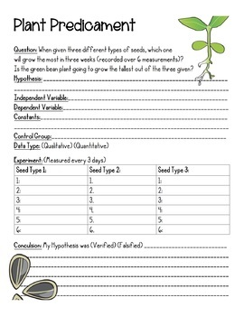 Grow Plants, 3 Separate Lab Experiments Photosynthesis (English, Spanish, SPED)