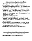 Grow a Borax Crystal Snowflake Instructions and Reflection