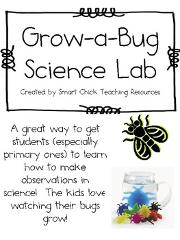 Grow a Bug Science Lab ~  Learning How to Make Observations