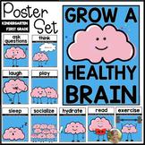 Grow a Healthy Brain Posters - Kindergarten & 1st Grade Me