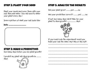 Grow a Plant Soil Experiment