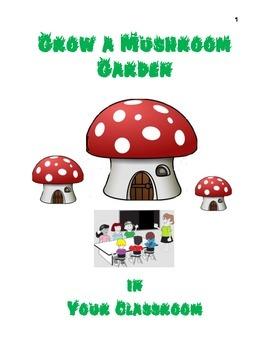 Grow a mushroom garden in your classroom