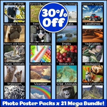 Mega Bundle of Photo Posters Display Packs