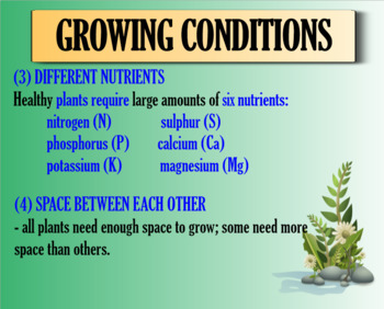 Growing Conditions of Plants