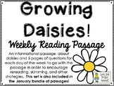 Growing Daisies! - Weekly Reading Passage and Questions
