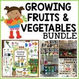 Growing Fruits & Vegetables Preschool Bundle