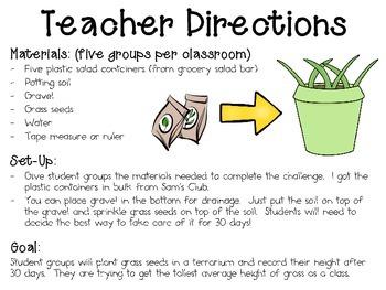 Growing Grass Terrariums ~ Monthly School-wide Science Challenge ~ STEM
